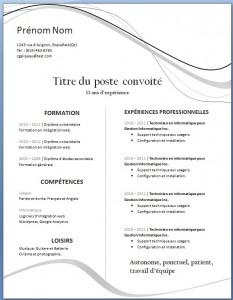 Exemple de CV #23