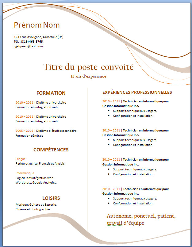 Curriculum Vitae Exemple A Telecharger