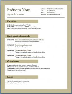 Exemple et modèle de CV gratuit #67