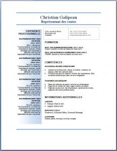 Exemple et modèle de CV gratuit #73