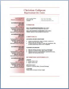 Exemple et modèle de CV gratuit #76