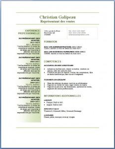 Exemple et modèle de CV gratuit #77