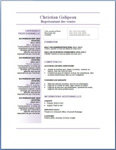 Exemple et modèle de CV gratuit #78