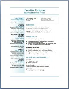 Exemple et modèle de CV gratuit #79
