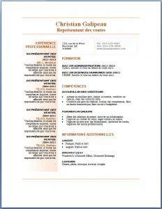 Exemple et modèle de CV gratuit #80