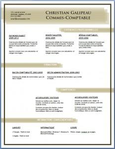 Exemple et modèle de CV gratuit #83