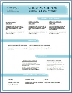 Exemple et modèle de CV gratuit #87