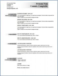Exemple et modèle de CV gratuit #90