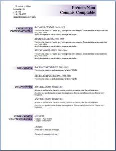 Exemple et modèle de CV gratuit #94