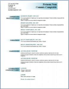 Exemple et modèle de CV gratuit #95