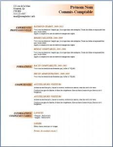Exemple et modèle de CV gratuit #96
