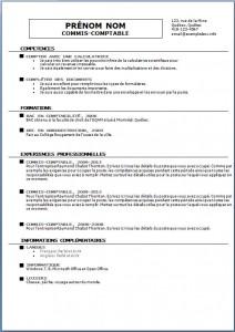 Modèle et exemple de CV #113