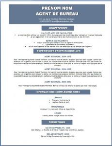 Modèle et exemple de CV word gratuit #114