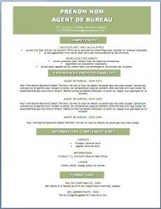 Modèle et exemple de CV word gratuit #118