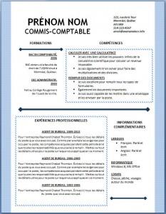 Exemple et modèle word gratuit de CV #121