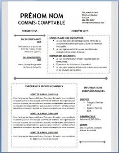 Exemple et modèle word gratuit de CV #122