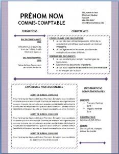 Exemple et modèle word gratuit de CV #126