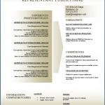 Modèle et exemple de CV #151