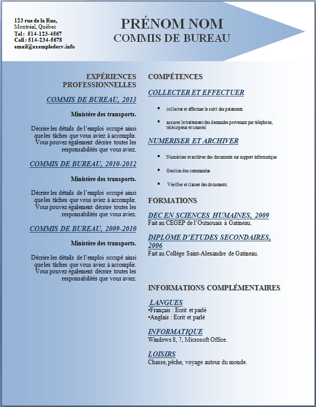exemple d un cv thematique