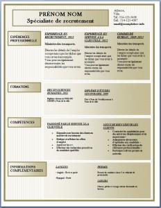 Modèle de l'exemple de CV #172