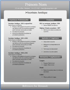 Exemple de CV #227