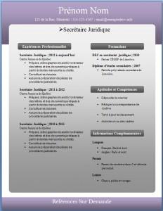 Exemple de CV #231