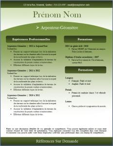Exemple de CV #240