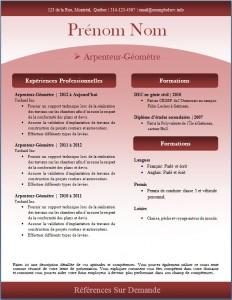 Exemple de CV #244