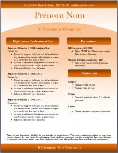 Exemple de CV #246
