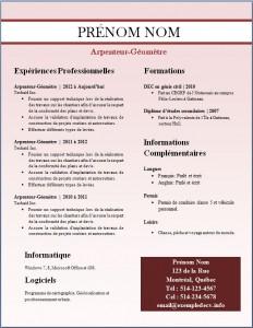 Exemple de CV #250