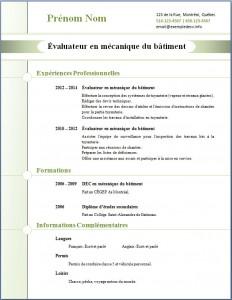 Exemple de CV #271