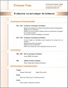 Exemple de CV #273