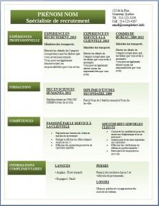 Exemple de CV #286