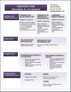 Exemple de CV #287