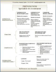 Exemple de CV #304