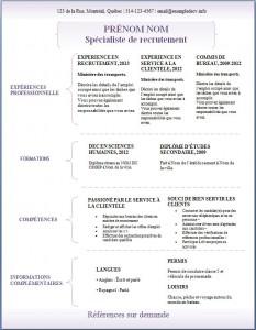 Exemple de CV #307