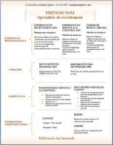Exemple de CV #308