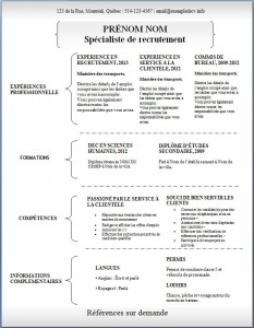 Exemple de CV #309
