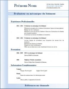 Exemple de CV #310