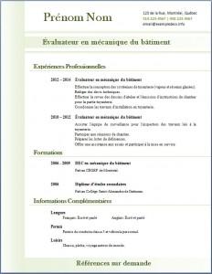 Exemple de CV #313