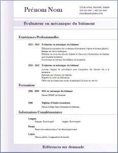 Exemple de CV #314