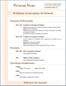 Exemple de CV #315