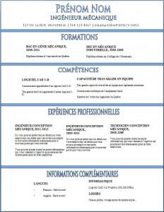 Exemple de CV #345