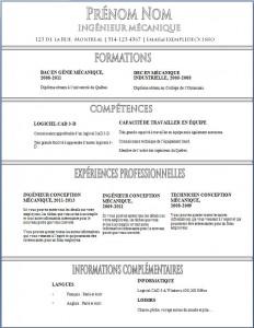 Exemple de CV #351