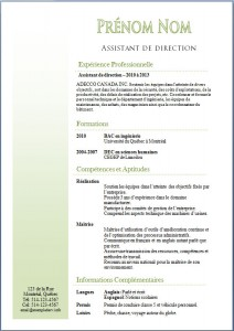 Exemple de CV #355
