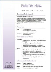 Exemple de CV #356