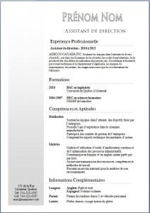 Exemple de CV #358