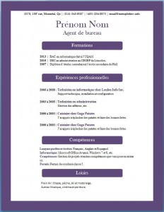 Exemple de CV #370