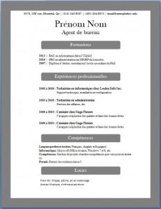 Exemple de CV #372