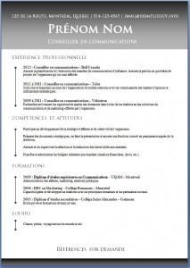Exemple de CV #460
